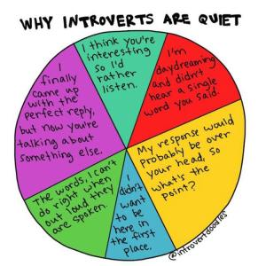 Introverts explained, image via @introvertdoodles